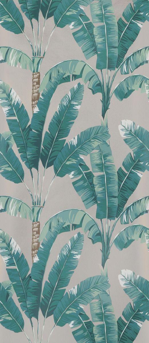 palmaria